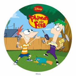 Disque azyme Phineas et Ferb -3
