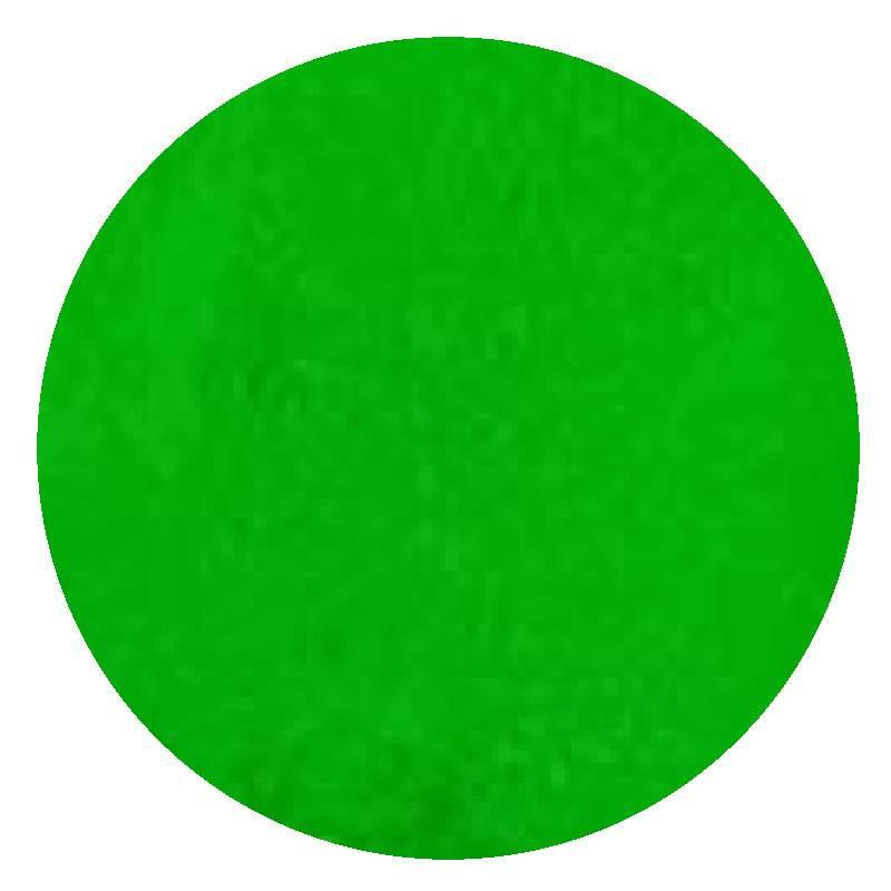 Colorant en poudre fluorescent vert Rolkem 5,7 g