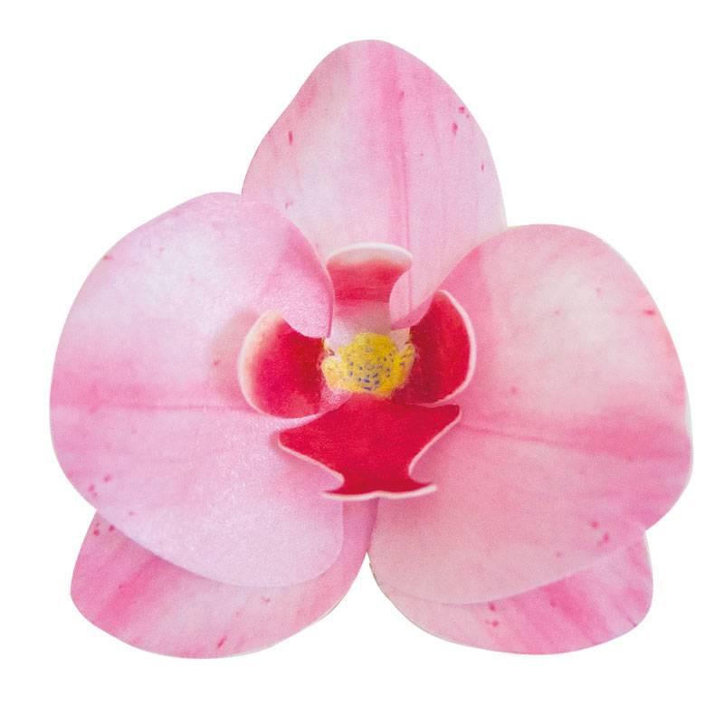 10 flores de orquídea rosa en papel de oblea 8,5 cm