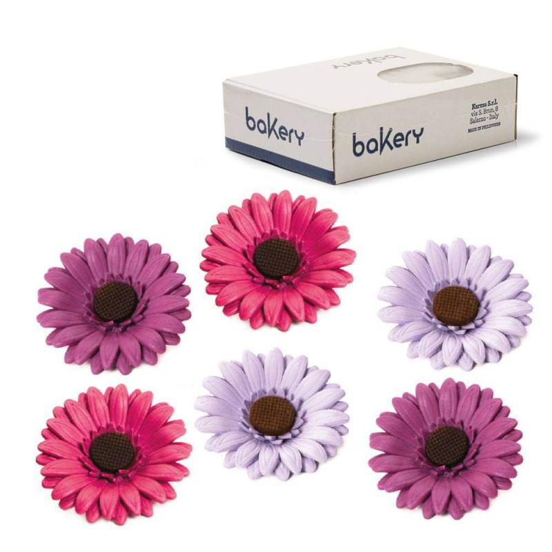 12 Fleurs marguerites colorées en sucre assorties 8 cm