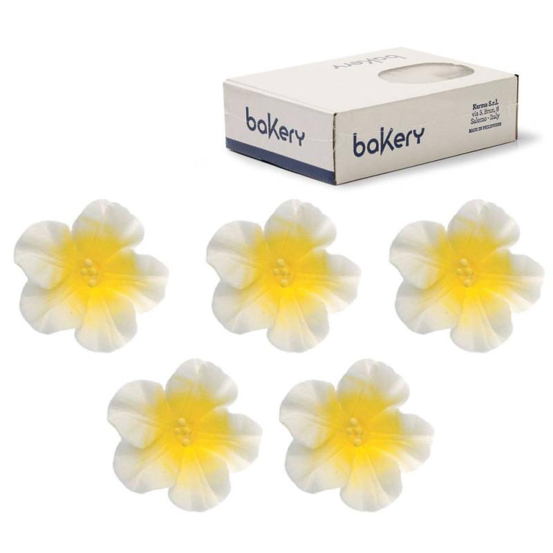 12 Fleurs AZALEE en sucre Blanches et Jaunes