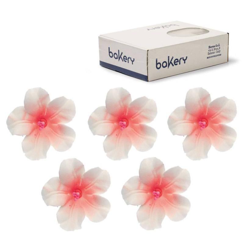 12 flores de AZALEE en azúcar blanco y melocotón rosa