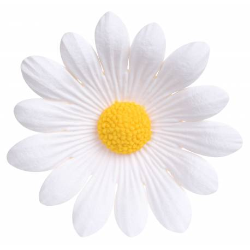 Flor de azúcar margarita blanca 5 cm