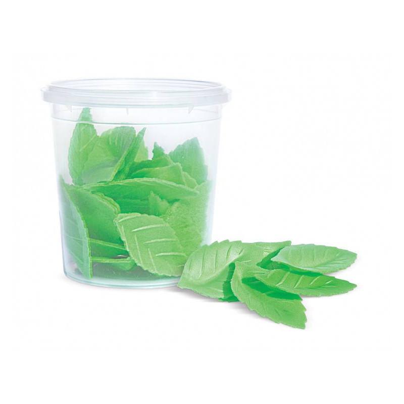 24 hojas verdes de papel sin blanquear