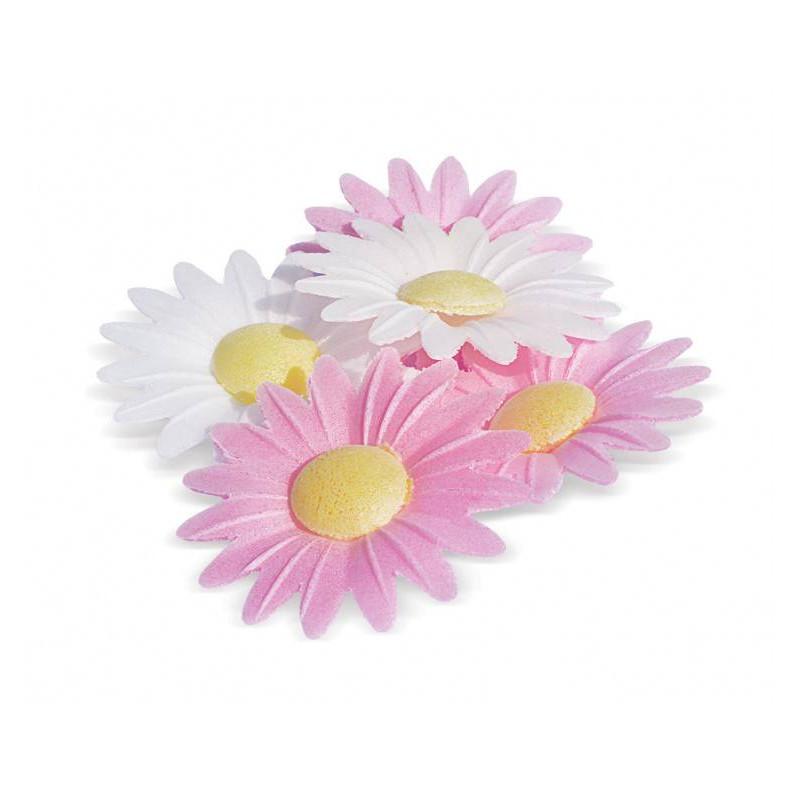18 fleurs marguerites en papier azyme
