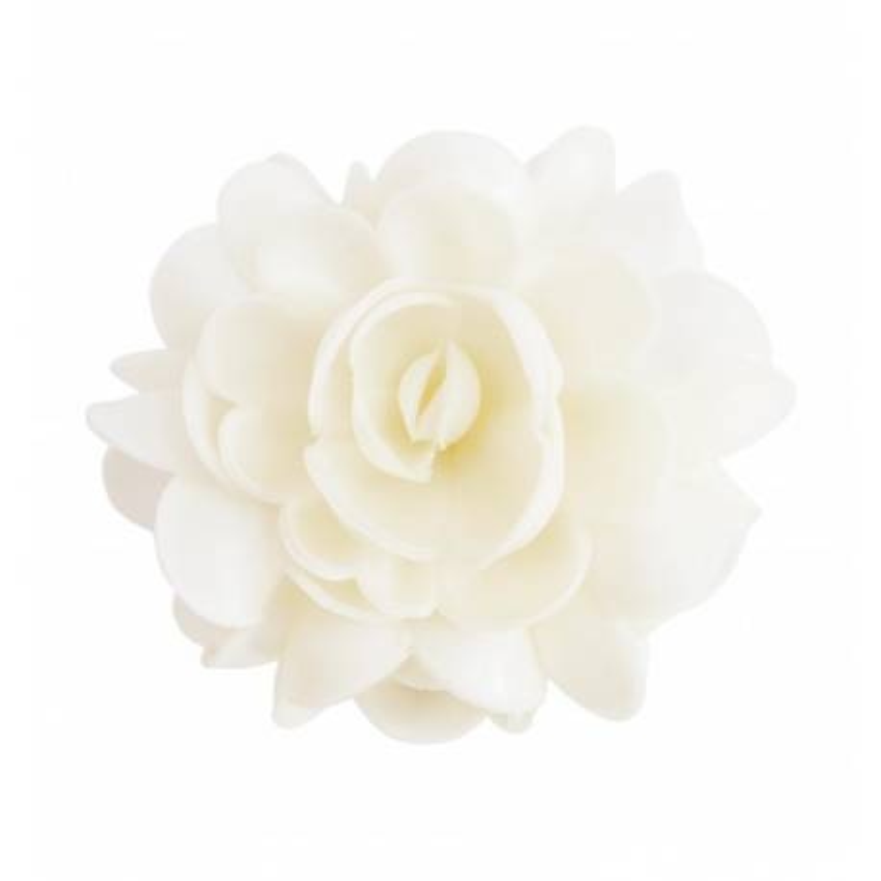 1 Flor blanca ácima XXL de unos 10 cm de diámetro