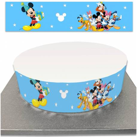 Sugar Cake Contour for Mickey and Friends Cakes