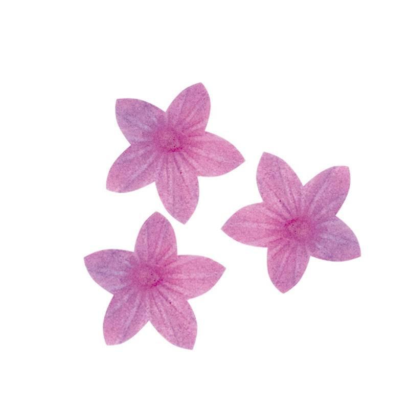 Flores violetas lilas en azima 4,5 cm x400