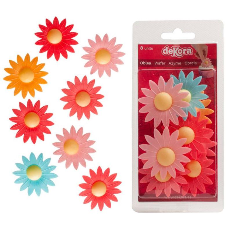 Flores de margaritas multicolores x8