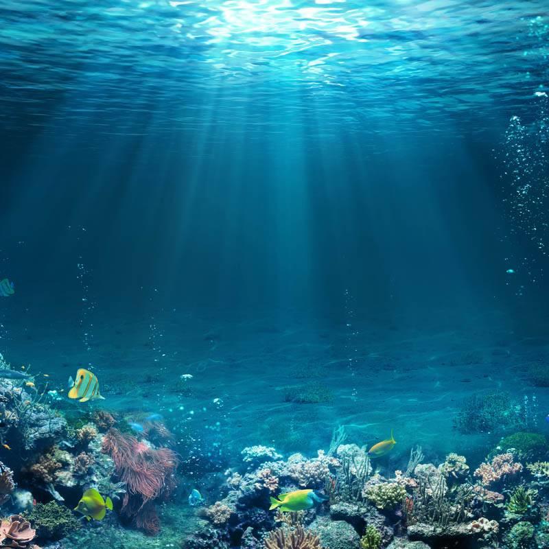 Mer Ocean et poissons