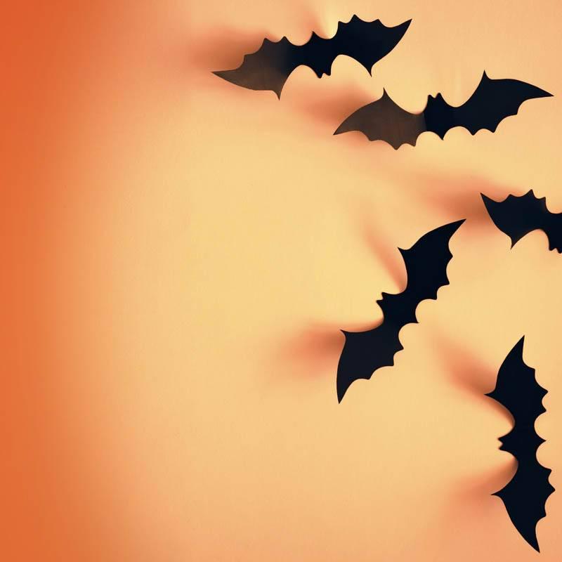 Halloween et chauve-souris